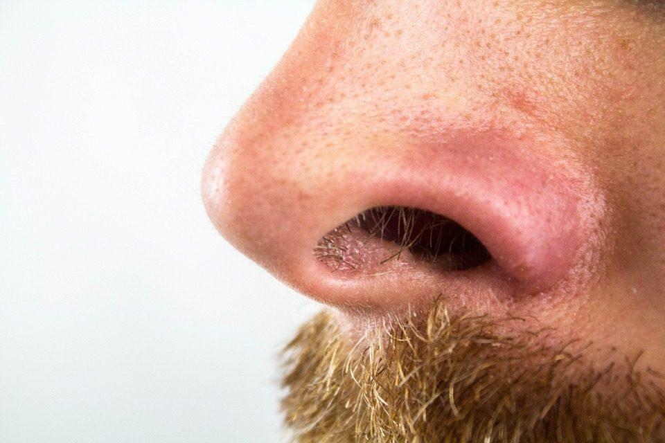 Strappate via i peli dal naso  È pericoloso 8b4cfb7d27cc