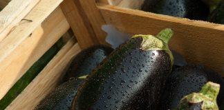 7 motivi per cui è importante mangiare le melanzane