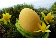 uovo di pasqua