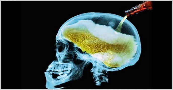alcol cervello
