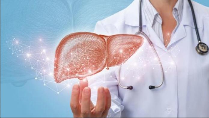 Cosa mangiare e cosa no per prevenire la malattia del fegato grasso