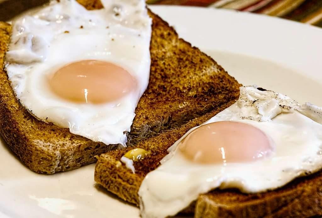 Quali sono gli alimenti più ricchi di proteine?