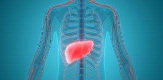 cibi-da-evitare-fegato-ingrossato